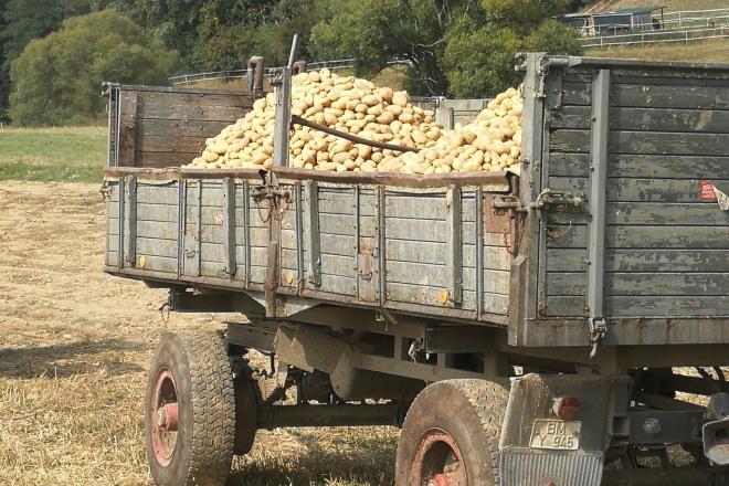 Kartoffelernte 2018 Teil 1