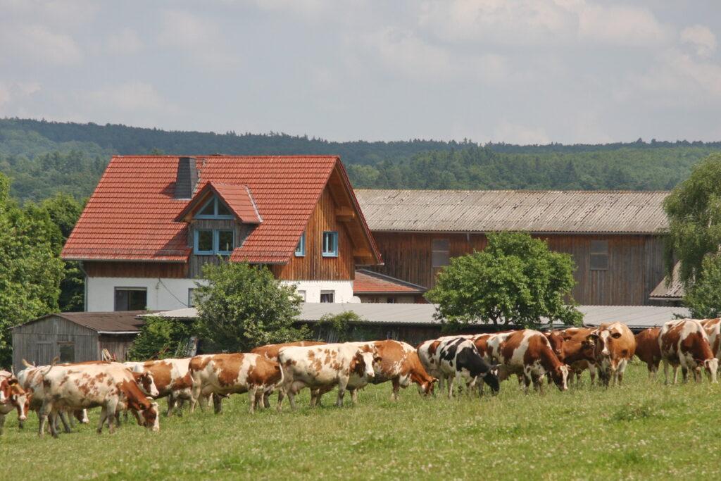 Rathsbacher Hof Ernsthausen